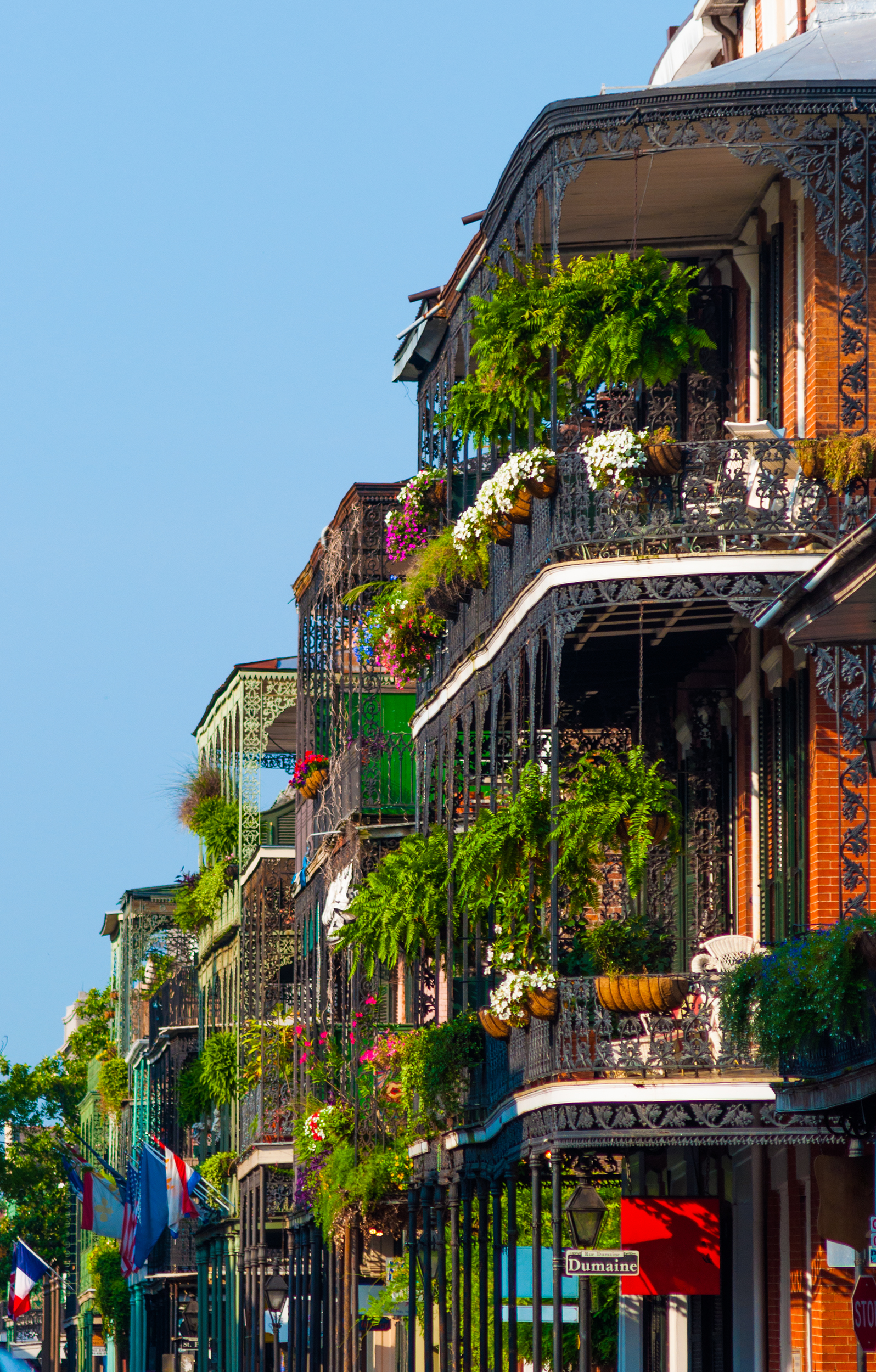 French Quarter Buildings with Garden Terraces